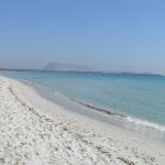 La spiaggia La Cinta, San Teodoro, Sardegna. Autore e Copyright Marco Ramerini