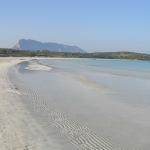 La spiaggia di Cala Brandinchi con l'isola di Tavolara sullo sfondo, San Teodoro, Sardegna. Autore e Copyright Marco Ramerini
