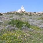 Il Faro di Capo Testa, Santa Teresa di Gallura, Sardegna. Autore e Copyright Marco Ramerini