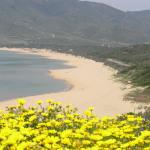 La spiaggia di Portixeddu, Fluminimaggiore. Autore e Copyright Marco Ramerini