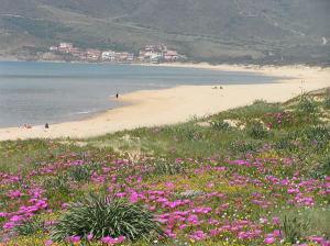 La spiaggia di Portixeddu, Fluminimaggiore. Autore e Copyright Marco Ramerini.