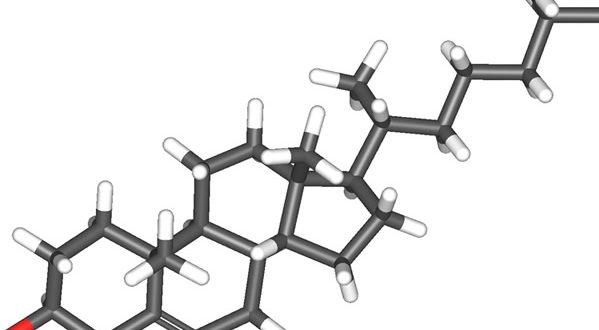 La molecola del Colesterolo. Autore Sbrools. Licensed under the Creative Commons Attribution-Share Alike