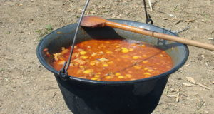 Gulasch (Gulash). Autore Lily15. Licensed under the Creative Commons Attribution