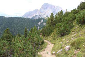 Sentiero del Monte Specie, Dolomiti, Italia. Autore e Copyright Marco Ramerini.